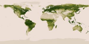 worldvegetation_earthday