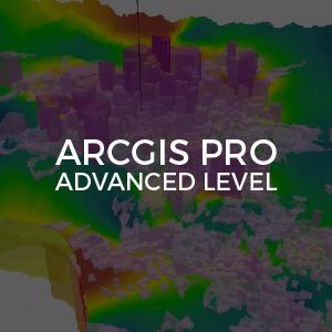 ArcGIS Advanced LEvel