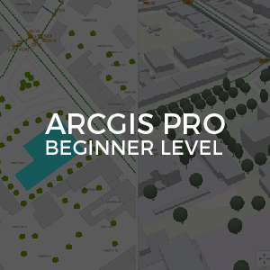 ArcGIS Pro Beginner Level inv