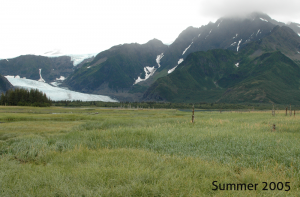 Icemelt_Alaska1